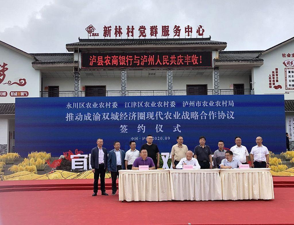 泸州永川携手 打造长江中上游晚熟龙眼沿江产业联盟